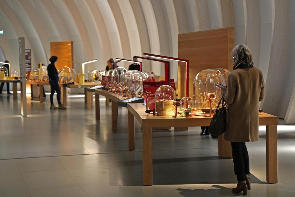 Un cabinet de curiosité géant, textures, odeurs se mélangent ...
