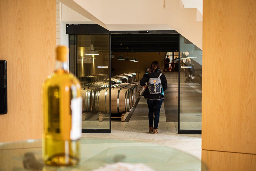 route des vins de sauterne
