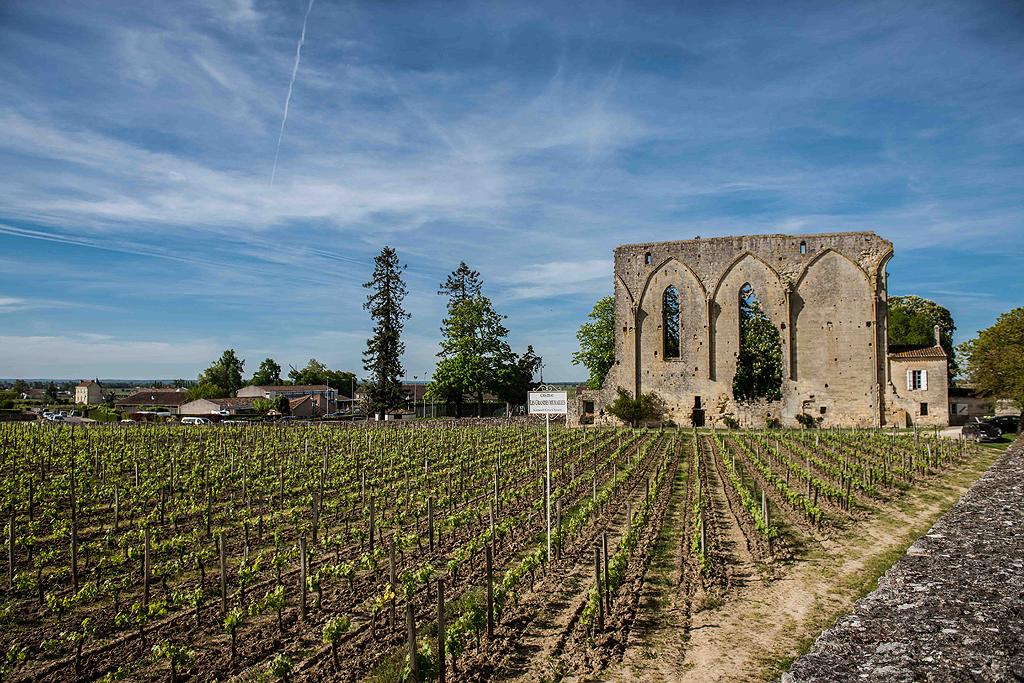 Visite de Saint Emilion - Guide Bordeaux Gironde